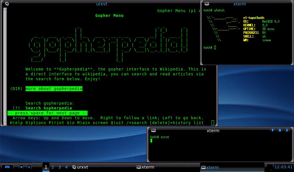 NetBSD-i386